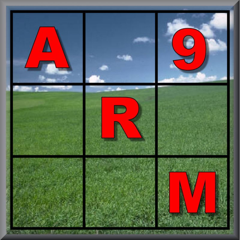 ARM 9 Release Notes